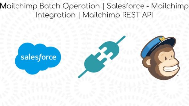 Mailchimp Batch Operation | Salesforce – Mailchimp Integration